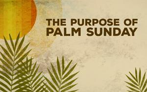 Palm Sunday 2019.jpg