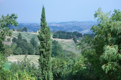 View from the country house.