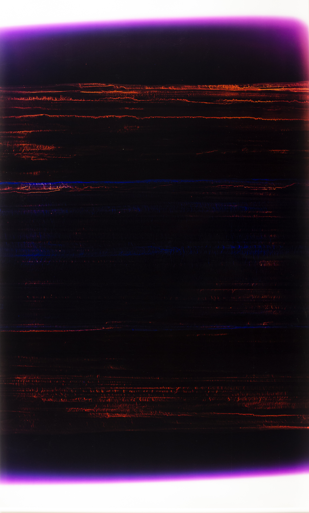 "Rise Above (005) Cliché-verre 44"" x 25"" 2009"