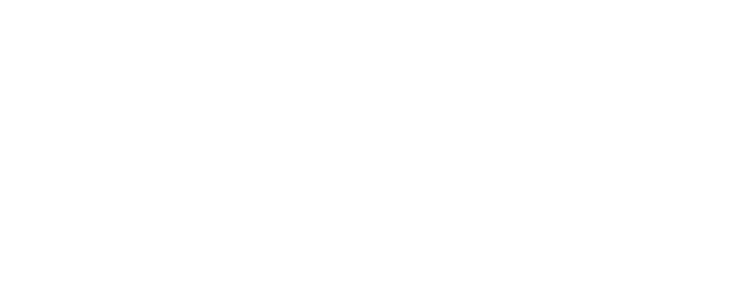 TRIΛD consulting group