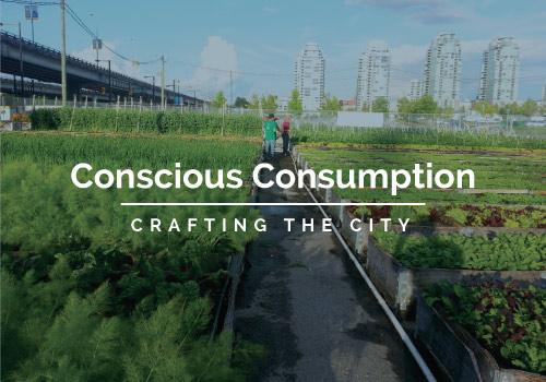 Conscious Consumption Series
