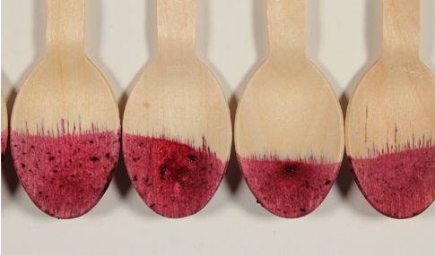 Lisa Myers.Strain to Absorb, 2015. 50 second digital stop-motion animation, blueberry puree, wooden spoons, watercolour paper, vinegar. Image courtesy of the artist.