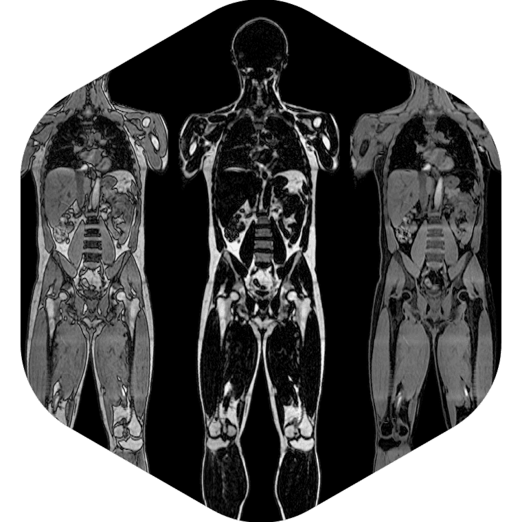 how to train body composition