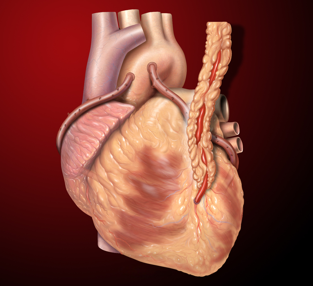 2 Chemicals Found To Boost Heart Reprogramming — Longevity ... |Heart Scar Tissue