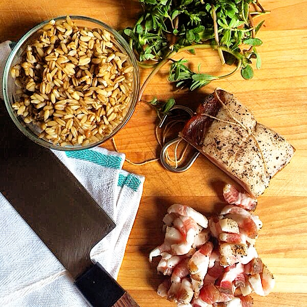 Aged Pork Belly + Oats + Purslane