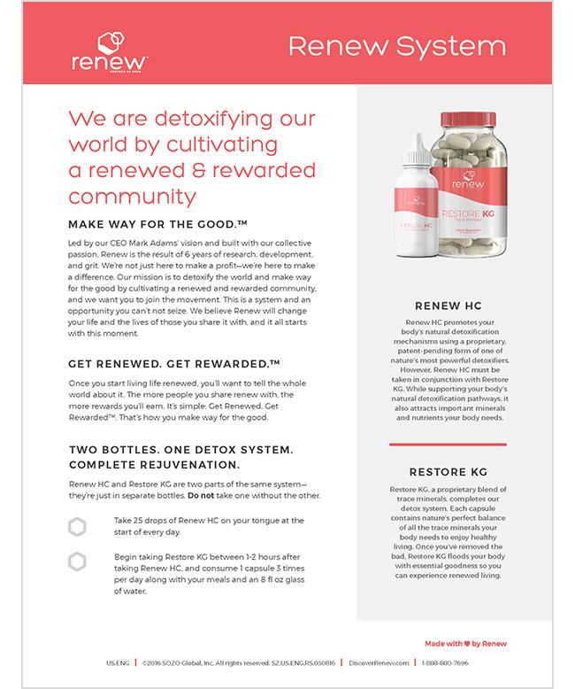 renew_system_US_ENG.jpg