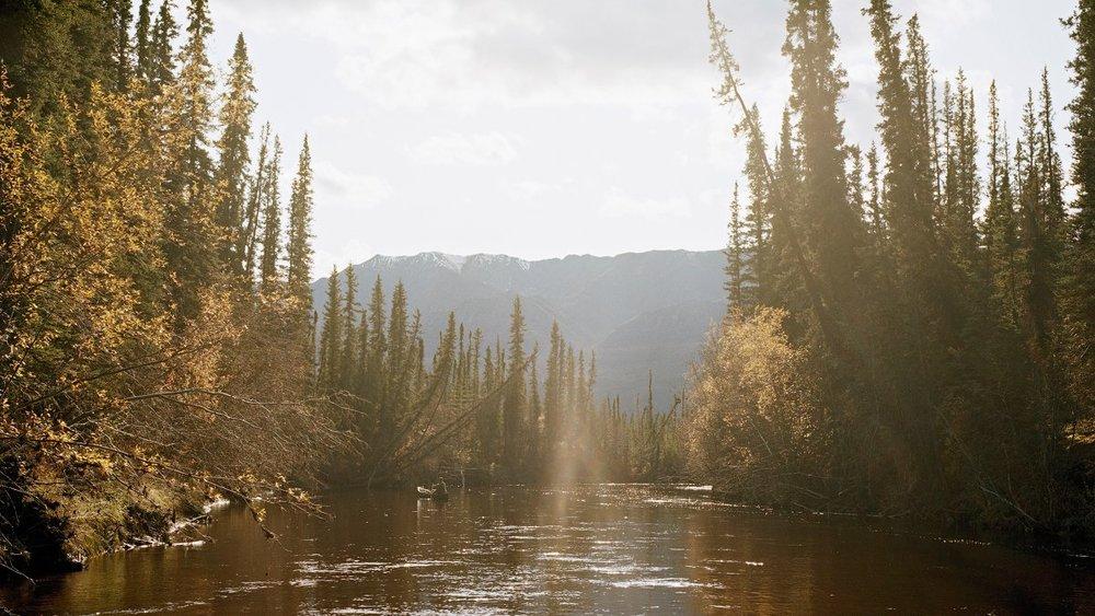 coydern-canoe_h.jpg