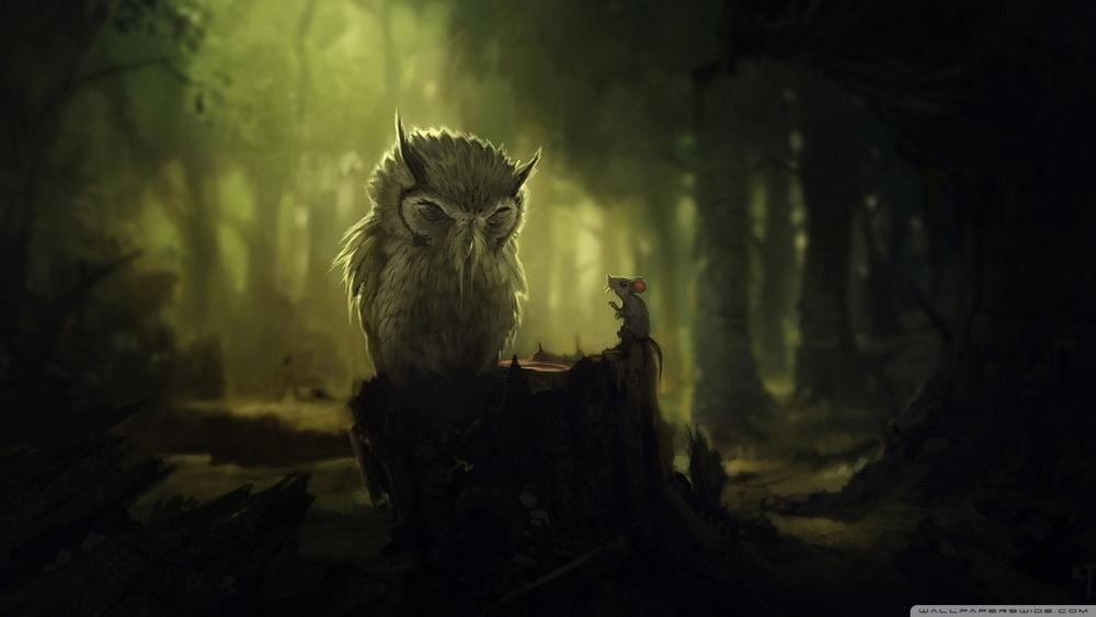 the_wise_owl-wallpaper-1280x720.jpg