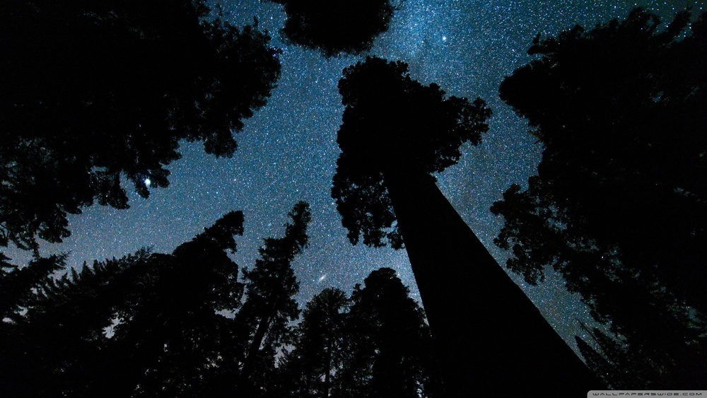 andromeda_and_the_milky_way_above_the_oregon-wallpaper-1280x720.jpg