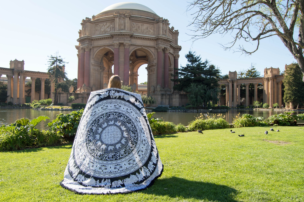 Palace of Fine Arts with roundie