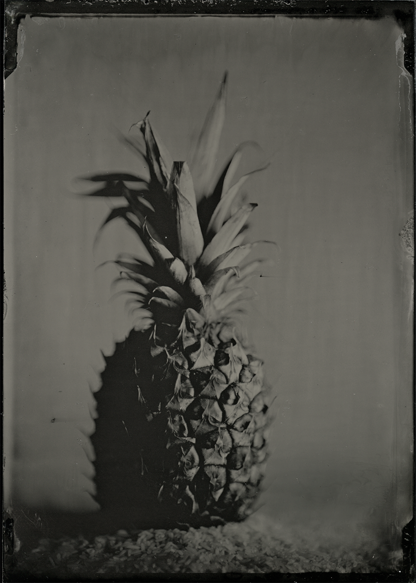 Pineapple © Henrietta's Eye