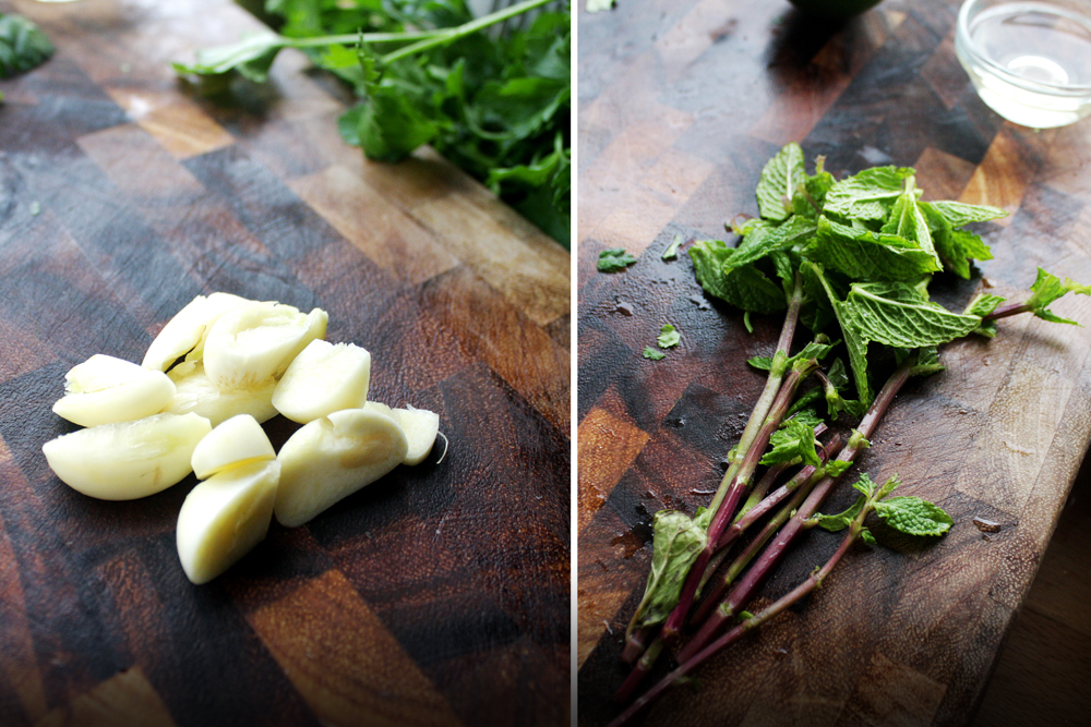 Rough chop the garlic and pick the leaves off of the mint stems. Add more garlic now if you want, instead of at the end, so it blends evenly.
