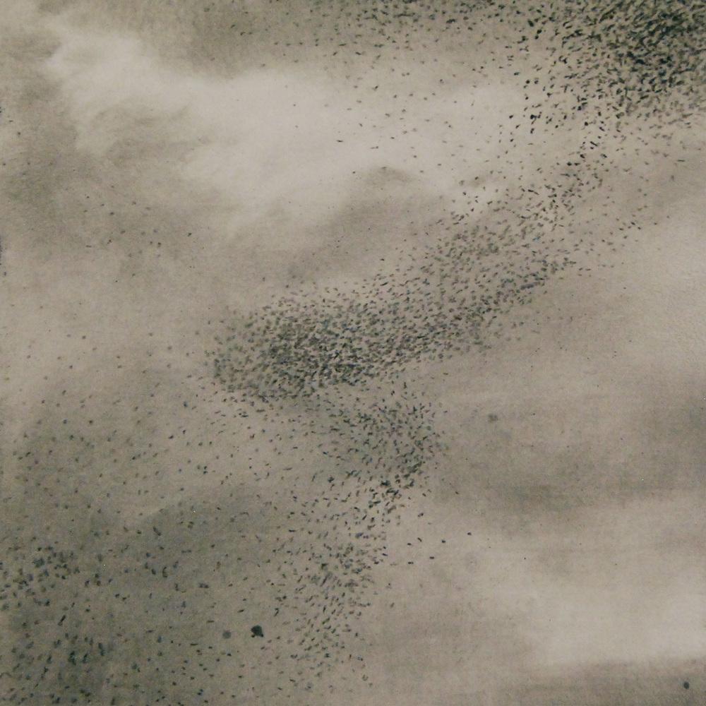 Linda-Davidson-Murmuration.jpg