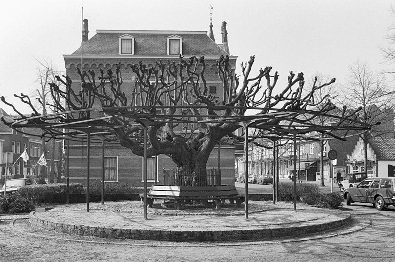 Lindeboom Oisterwijk