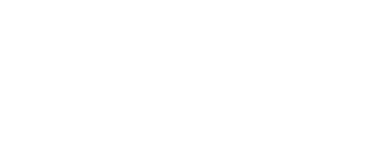 FORT Solutions Group