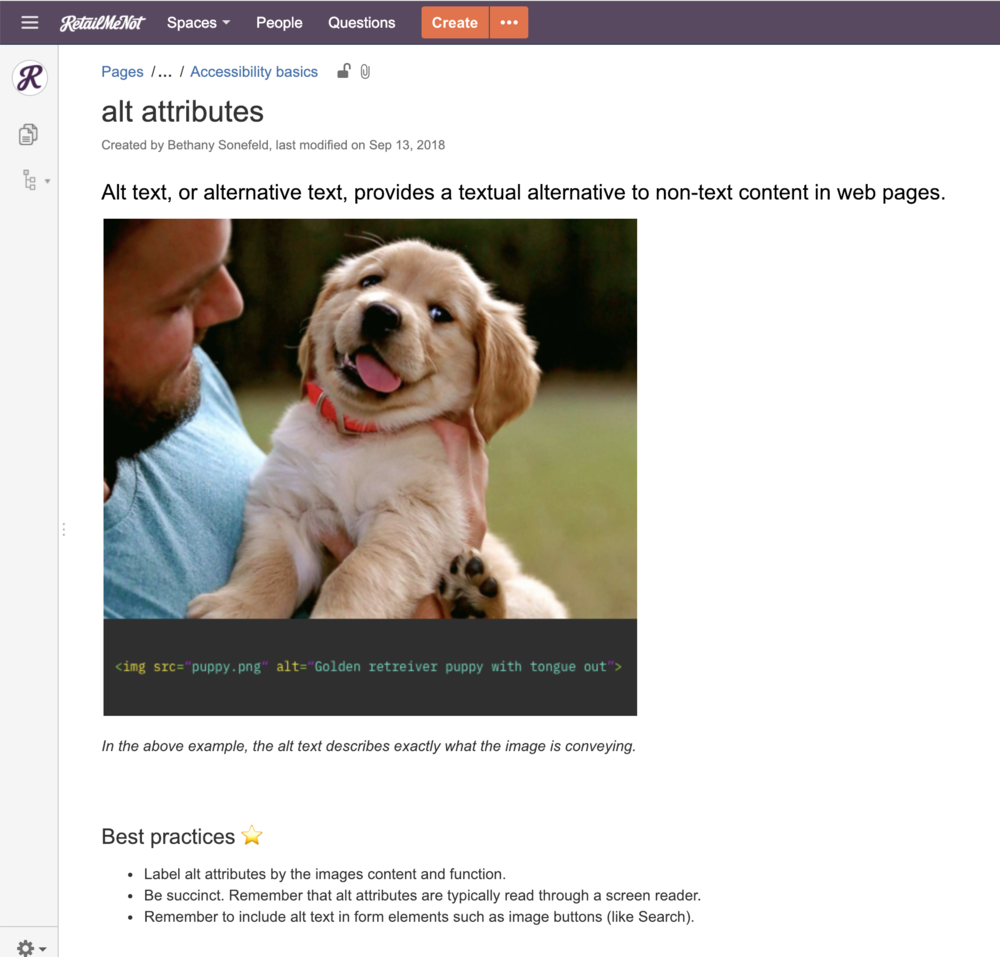 What better way to educate people about alt text than through the use of a cute puppy.