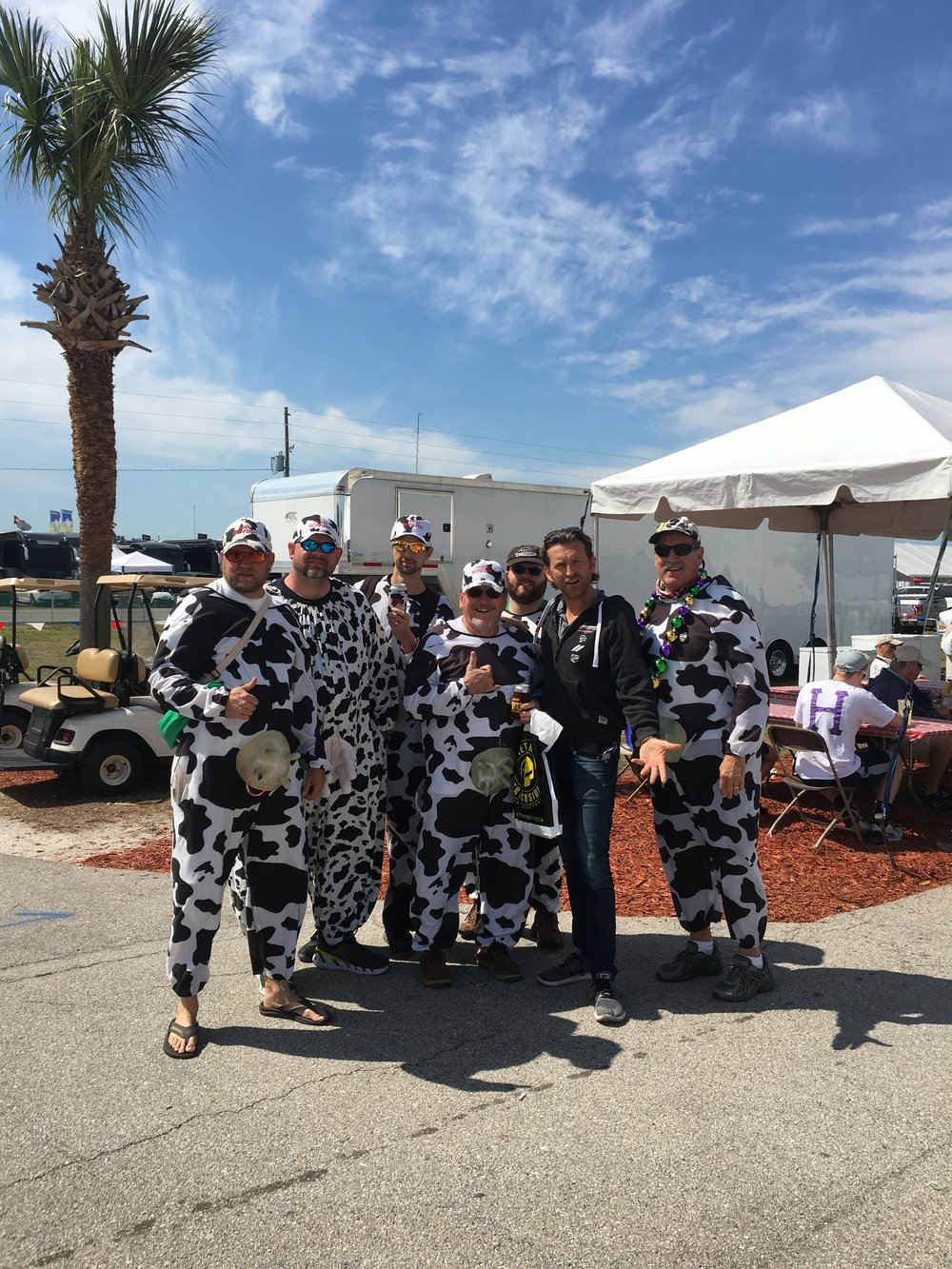 Not long after I had my annual reunion with the 'Cows' that always make an appearance at Sebring (they are apparently sensible intelligent and successful people outside of this weekend). So they tell me.