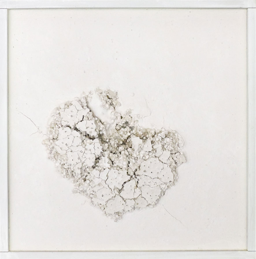 Quadratserie_05   2014  30 cm × 30 cm  Gips, Sago, Holz | plaster, sago, wood  verkauft | sold