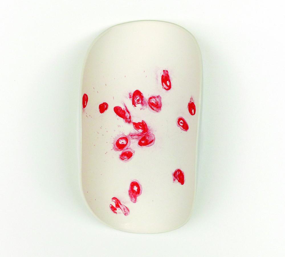 Serie  leaving traces , Objekt_05  2015   ∅  14cm  Porzellan, Melonenkerne, Pigmente, Glasur | porcelain, melon seeds, pigment, glaze