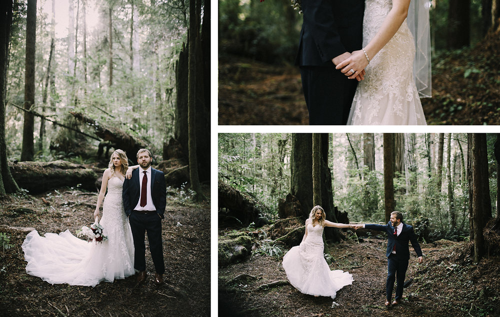 Northern California Redwoods Wedding Photographer