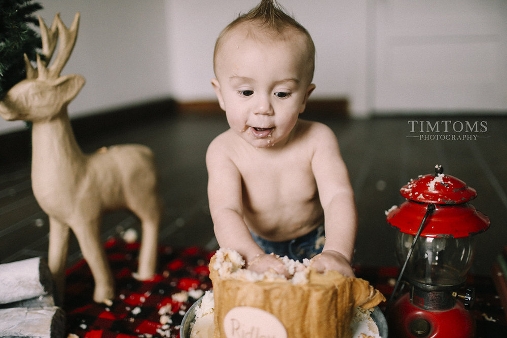 one year old cake smash photographer