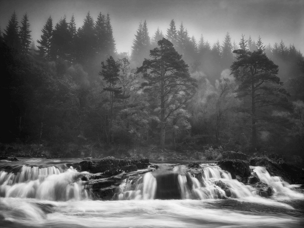 GlengarryForestScotland_.jpg