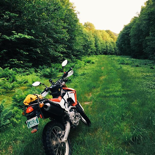 Another day in the green. #vt #love