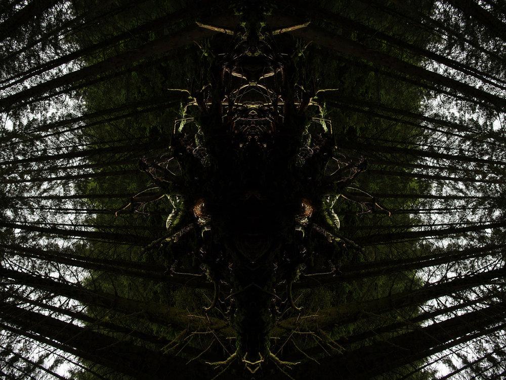 Mirror_Scotland-6.jpg