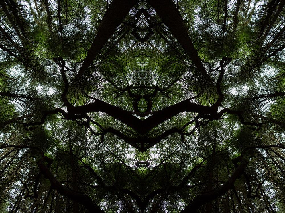 Mirror_Scotland-9.jpg