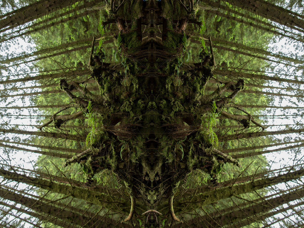 Mirror_Scotland-1.jpg