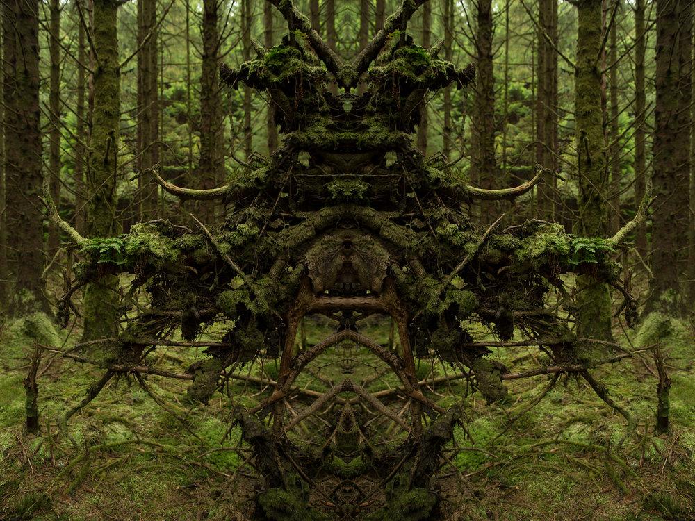 Mirror_Scotland-2.jpg