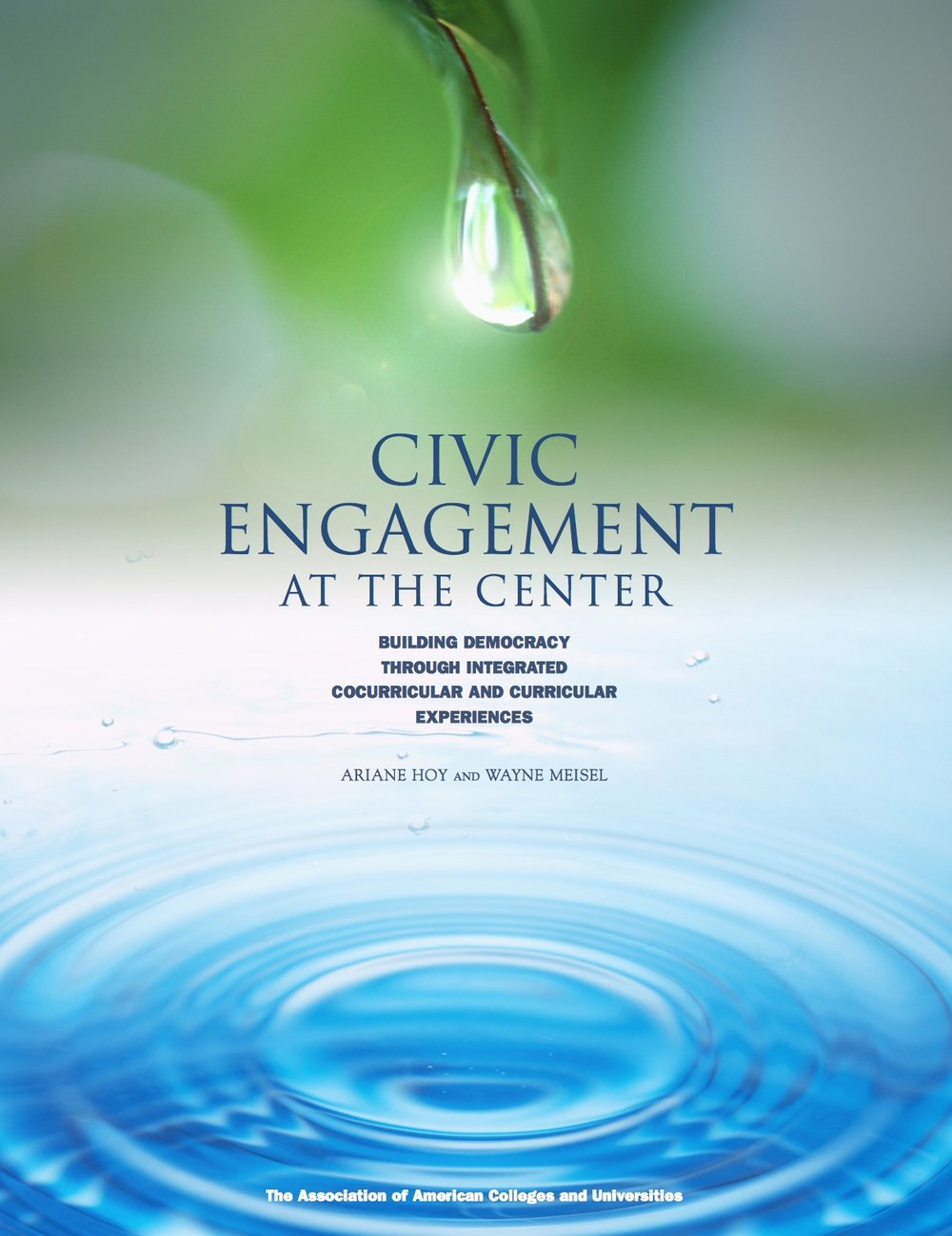 Civic Engagement at the Center: Building Democracy through Integrated Co-curricular and Curricular Experiences
