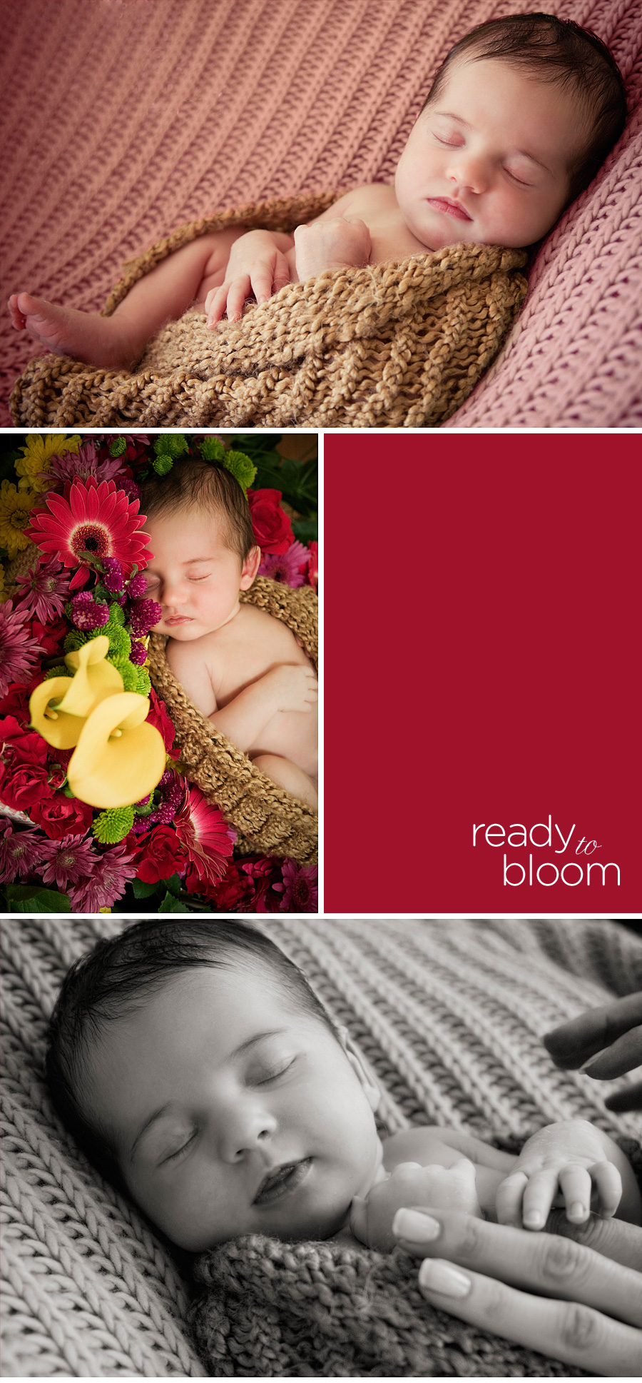 creative newborn portraits taken on location in Newport Beach, Orange County