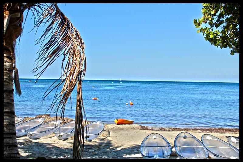 cruise_beach.jpg
