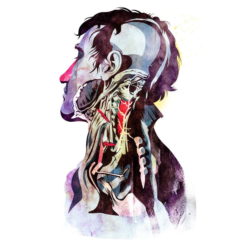 Alvaro_Hidalgo_Anatomy_Quain.jpg