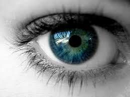 eyeweb.jpg