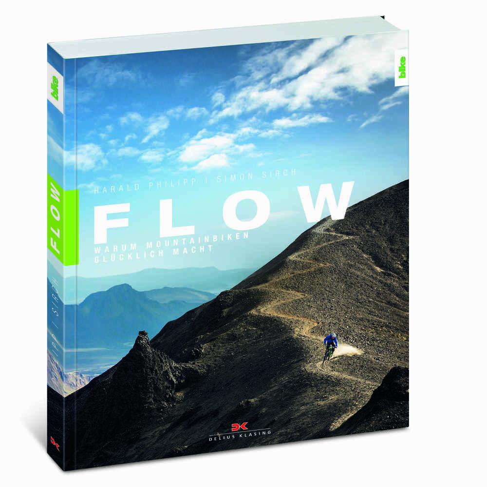 Im Kapitel 3 des Buches geht es um Flow und Risiko