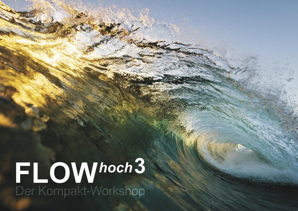 flowHOCH3 workshop