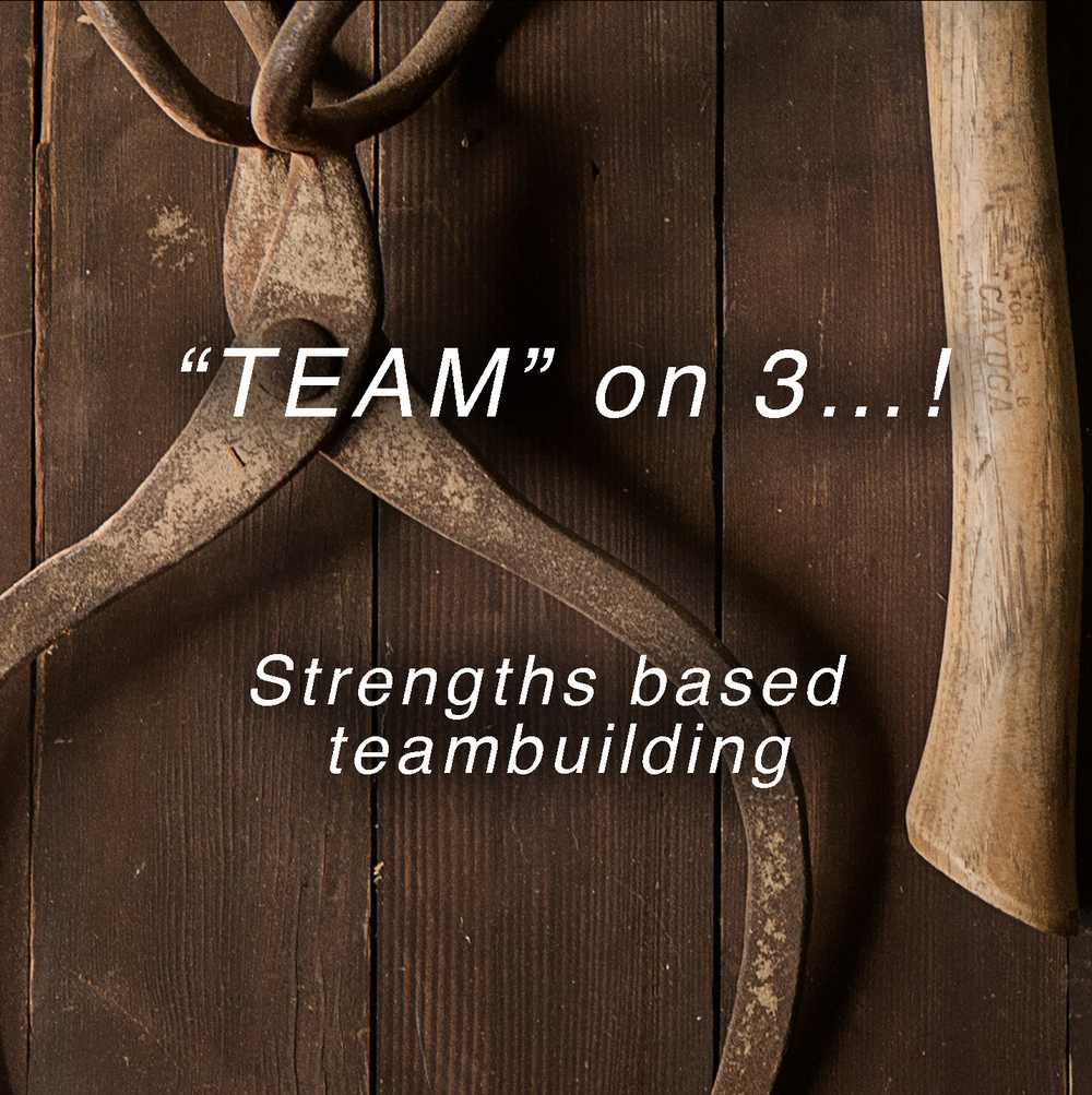 The research is clear.   Focusing on individual strengths improves productivity and self-confidence.  A team may be able to stand on a log together, but until they recognize individual strengths, talents and contributions, they will continue to struggle as an effective team.