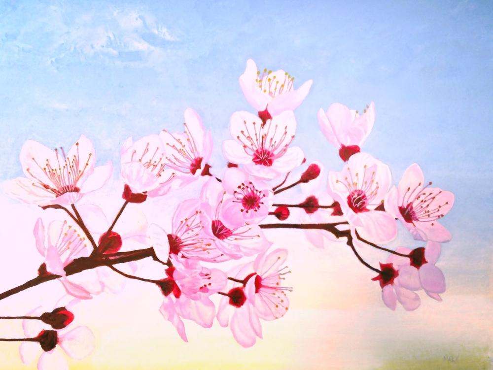 cherry blossoms better.jpg