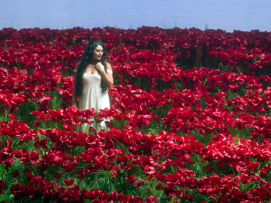 Mezzo-soprano Anita Rachvelishvili sings amid a massive field of poppies in a Metropolitan Opera production of Borodin's Prince Igor .  Cory Weaver/Metropolitan Opera