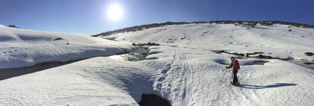The long walk to Charlottes  pass