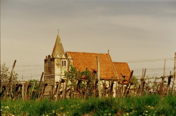 Brunn Winery.jpg