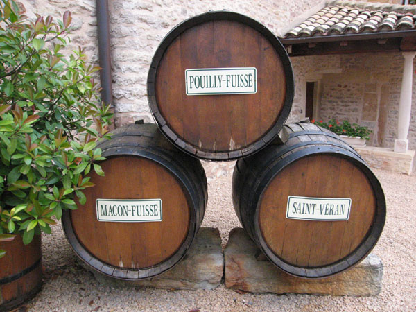 Domaine Dutron barrels.jpg