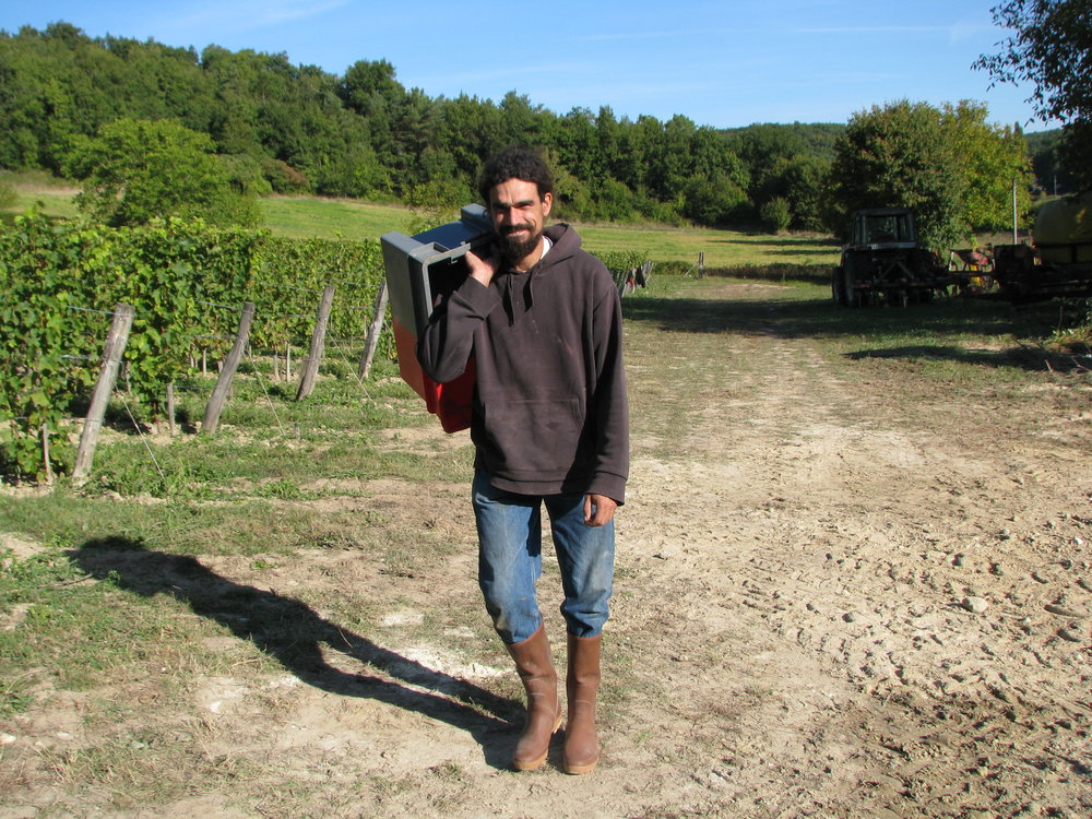 L'Arpenty during harvest.JPG