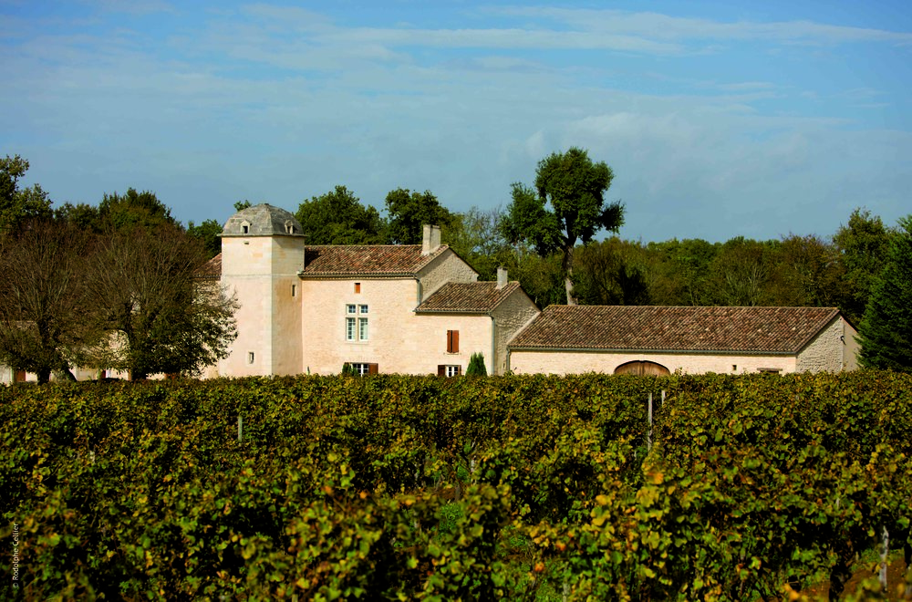 vineyards and chateau de laborde.jpg