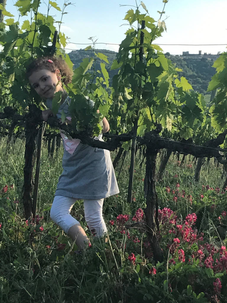 Daughter in vineyard.jpg