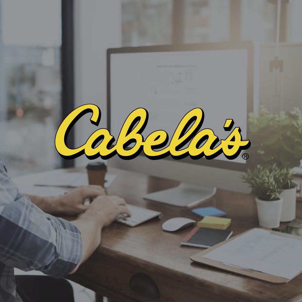 Cabela's Portfolio Assets-04.png