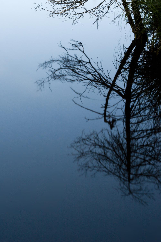 〖 reflection 〗