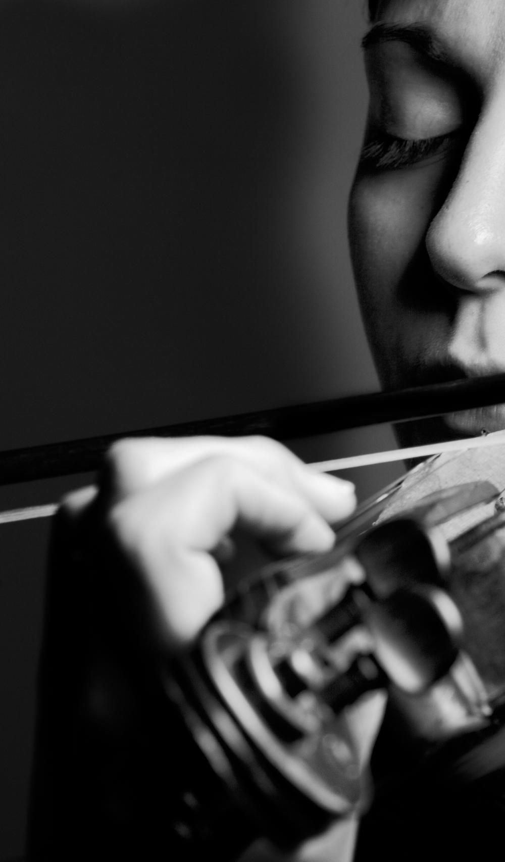 〖 first violin 〗